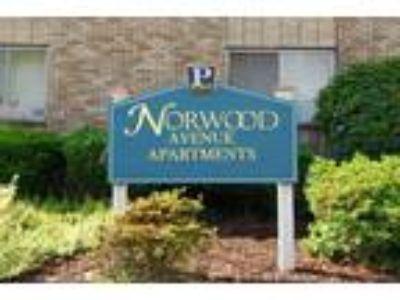 Norwood Avenue - The Hickory