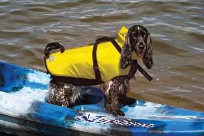 PetSafe Fido Float Water Safety Vest for Dogs, Medium, Yellow