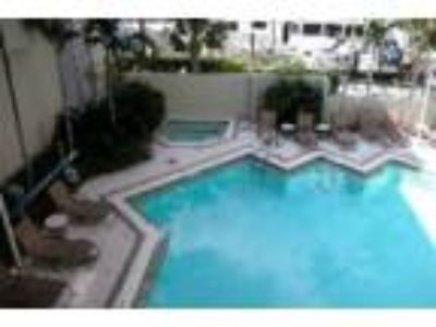 RELAXATION - excellent location! - Condo