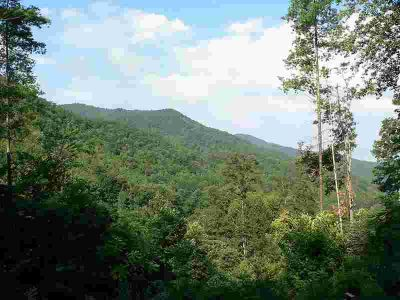 Lot Deep Gap Rd Bryson City, Great lot with house site.