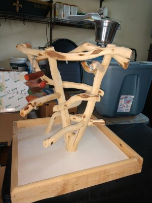 Parrot Table top Perch/Gym