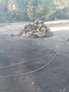 Truckload of wood seasoned 100 bucks