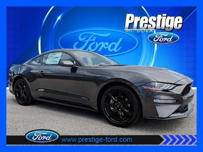 2019 Ford Mustang EcoBoost (Magnetic)
