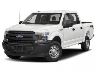 2019 Ford F-150 XL (White)