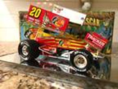 action 1/24 Danny Lasoski bass pro/madagascar sprint car 1