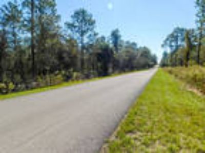 Central Florida Land for Sale, 0.33 Acres, Wooded Lot
