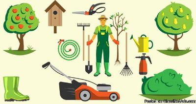 Charlotte Tree Service | Tree Removal Service Charlotte | Tree Trimming