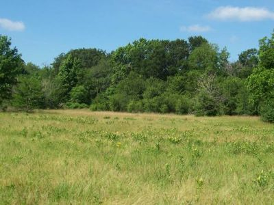 - $45000 10 Wooded Acres on HWY 37 (Quitman, Tx)