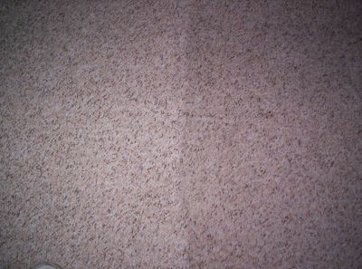 Superior Carpet Cleaning in Oakland Park - Must see pics