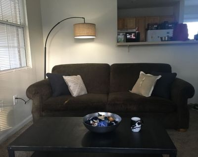 Comfy sofa $200 will deliver! Price negotiable! Must go asap!