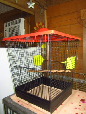 Antique Bird Cage with Red Top