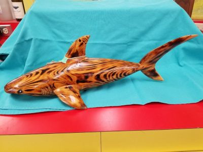 Wood Carved Shark 1594-3082
