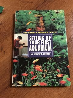 Setting Up Your First Aquarium Care Guide for Fish