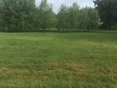 Tbd Davis Circle Wytheville, great building lot in the