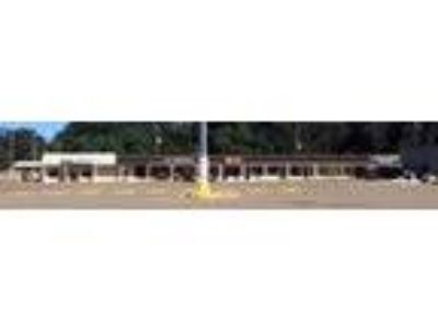 Retail-Commercial for Lease: 730 SF Retail Space Bastrop