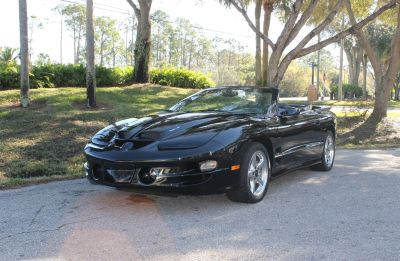 1999 Pontiac Firebird Trans Am (Black)