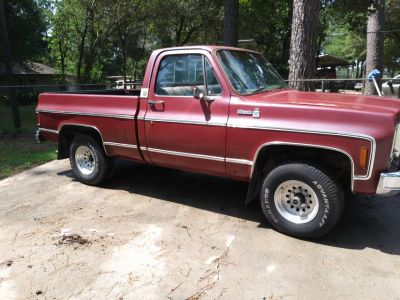1976 Chevy C10 short bed 4 x 4