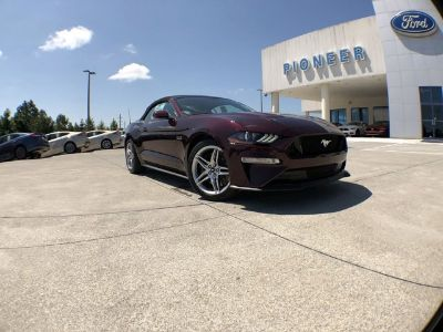 2018 Ford Mustang GT Premium (Royal Crimson Met Tinted)
