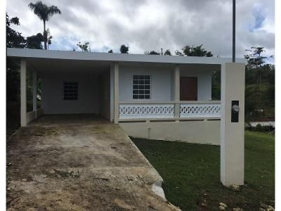 3 Bed 1 Bath Foreclosure Property in San Sebastian, PR 00685 - Rd 186 Bo Cibao