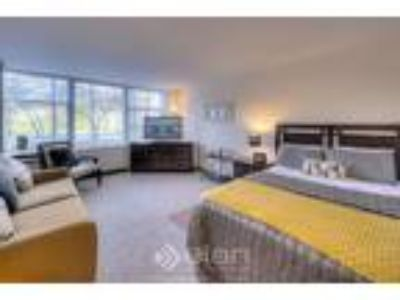 0 BR One BA In CHICAGO IL 60616