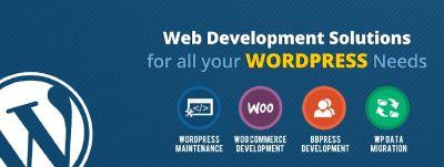 Web Design and Development Services | Website Development USA