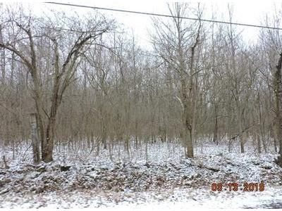 Foreclosure Property in Hubbard, OH 44425 - Creed Rd.