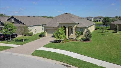 18923 Muhly Grass Lane LUTZ, Pristine Serene Waterfront Four BR