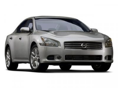 2009 Nissan Maxima 3.5 SV (Winter Frost Pearl)