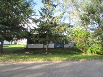 Preforeclosure Property in Parkers Prairie, MN 56361 - N Dayton Ave