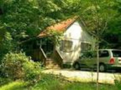 A LITTLE BIT OF HEAVEN -comfortable cabin in the heart of the great smoky
