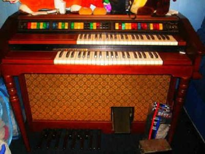 $100 Organ Electric