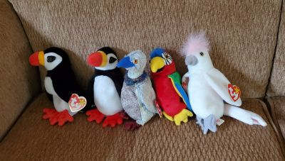 Beanie Baby Tropical Birds. All for $7.