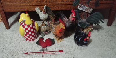 Roosters all for all for 6.00