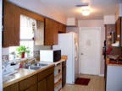 Roommate wanted to share Five BR Three BA house...