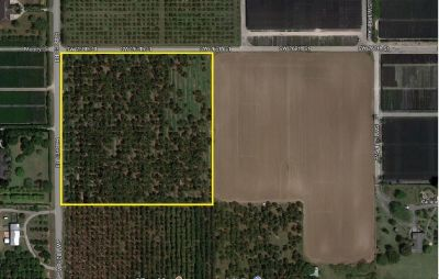10 Acres of Avocado Groves - Redland