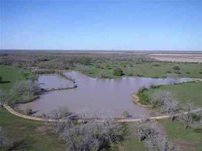 17105 (130 acres) FM 102 Eagle Lake, Duck hunter's paradise!