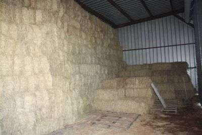 Quality Horse Hay for Sale (Louisiana )