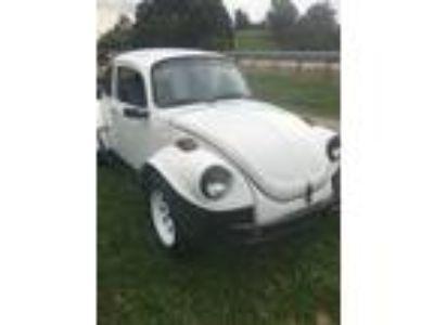1973 Volkswagen Beetle - Classic Baja Buggy VW Bug 1