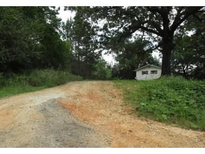 3 Bed 2 Bath Foreclosure Property in Abbeville, AL 36310 - County Road 59