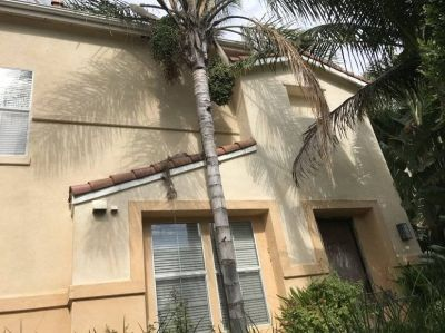 $5850 3 single-family home in San Juan Capistrano