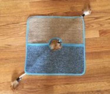 Cat Play/Scratch Mat