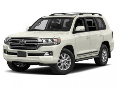2019 Toyota Land Cruiser (BLIZZARD)