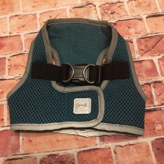 XS Teal Doggy Harness