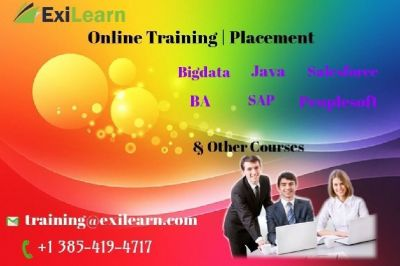 Exilearn Online Training Institute
