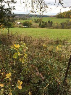 9.6 Acres Overlooking Galena Territory