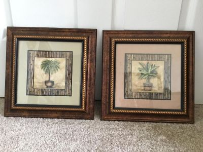 Palm Pictures