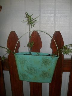Blue Metal Butterfly Planter of Airplane/Spider Plants