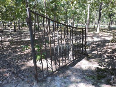 Vintage iron entry gates