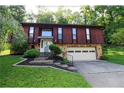 3 Bed 3 Bath Foreclosure Property in Charleston, WV 25314 - Huber Rd