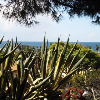 $2800 1 apartment in Western San Diego